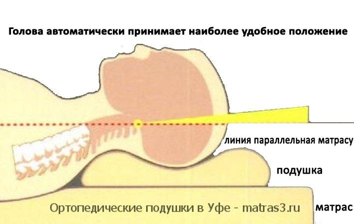 http://matras3.ru/images/upload/ортопедические%20подушки%20купить%20в%20Уфе%20акция.jpg