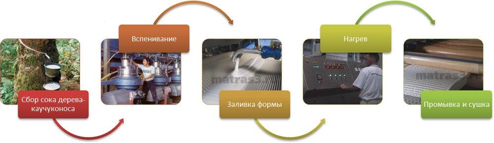 Процесс изготовления латекса Данлоп